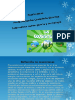 Paula Alejandra Castañeda Sánchez.pdf