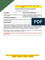 Formato Peligros Riesgos Sec Economicos seccion 2