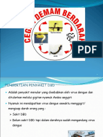 328796187-MATERI-PENYULUHAN-DBD-ppt.ppt