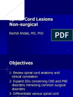 Non-surgical Spinal Cord Disorders PDF