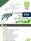 ecologiaybiomas1-160809033313