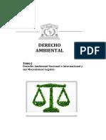 Derecho Ambienta 1- Grande