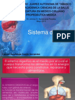 sistemadigestivopropedeutica-130624213633-phpapp02