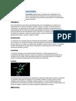 Aminoácidos-esenciales.docx