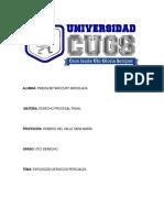Servicio pericial.docx