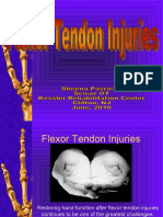 week 23 Flexor_tendon_Injuries-_SHEENA_2010_part_1