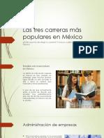 Las tres carreras más populares en México