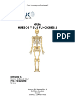 esqueleto.pdf