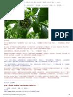 高山杉〈新譯巴利《長部》雜談〉與徐文堪〈「喬答摩」沒有必要「規範」為「果德瑪」〉.pdf