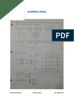 Algebra Lineal Matrices U-2