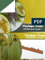 Cholupa Team