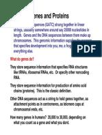 DeJong 5.pdf
