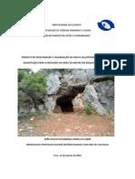 João Varela Tese Mestrado Final.pdf