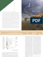 Dinossauros Na Parede - Agenda Cultural Cascais