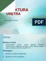 Wenda TK Striktura Uretra - Copy