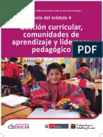modulo4-gestion-curricular (1).pdf