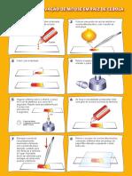 Aula prática. observacao_mitose_cebola1.pdf