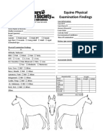 Physical Examination - Equine 2pg Version
