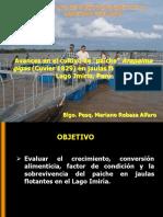 5 Expo MRebaza Iquitos