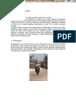 manual-motocicletas-como-levantar-rueda.pdf