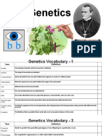 willow bolton - genetics