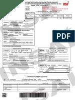 GuiasAnimales (11).pdf