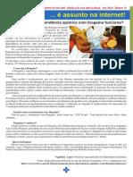 Tratamento Para a DQ Com Ibogaína Funciona - Ano 2016 - No. 14
