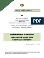 Formato Analitico Ginecologia y Obstetricia Dr Guillermo Coronel Copia 2