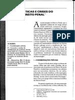 Caracteristicas e Crise do Moderno Direito Penal Winfried Hassemer trad. Pablo Rodrigo Alflen.pdf