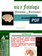Anatomia y Fisiologia Sistemanervioso-100812174725-Phpapp02 (4)