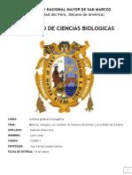 EL MECHERO DE BUSEN - Y EL ESTUDIO DE LAS LLAMAS.docx