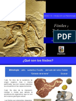 Clase5 Fosiles y Tafonomia