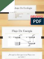 Trabajo de Ecología (1)