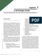 Biolog a Celular y Molecular