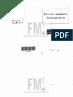 (521-09) Derecho Ambiental Profundizado - Pigretti.pdf