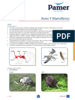 Biologia_1° Año_Sem 7_Aves y mamíferos