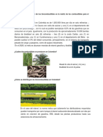Biodiesel a Nivel Nacional