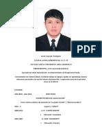 Javier Curriculum Actualizado Al Maximo 111