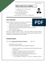 CV - Percy Joel Plaza Torres