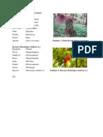 6 Biofarmasetika Suppo