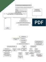 pathophysiology of diabetes mellitus type 2