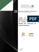 R 1060 15 Informe Protocolo de Ensayos