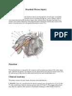 Brachial Plexus Injury.doc