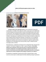 Transgenicos Pruducen Cancer en Ratas