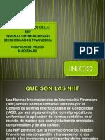 Conceptos Basicos de Las Niif