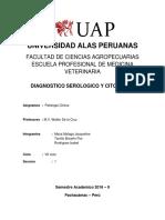 Informe 10 Diagnostico Serologico y Citologia