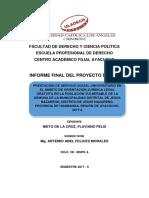 INFORME FINAL DEL PROYECTO DE SSU FLAVIANO NIETO DE LA CRUZ.pdf