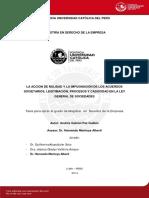 PAZ_GUILLEN_ANDRES_ACCION_NULIDAD.pdf
