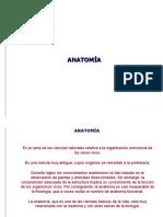 Anatomia y seguridad industrial