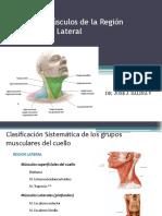 Cuello Musculos Superficiales y Triangulos2.pdf